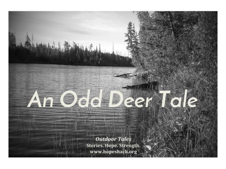 Outdoor Tales (3)
