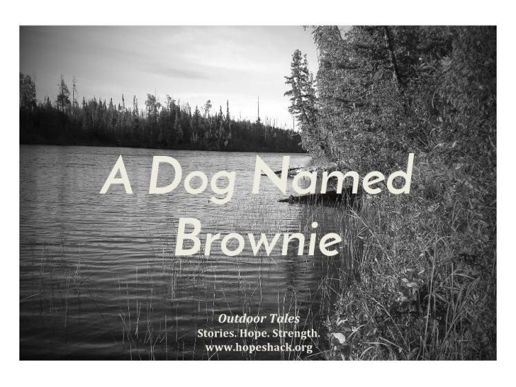 A Dog Named Brownie